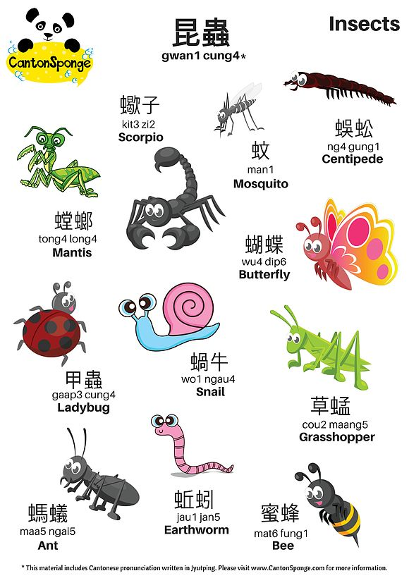 "Here's an Insects themed A3 poster. You'll notice that all the vocabulary consist of this radical 虫, meaning ""insect"". 