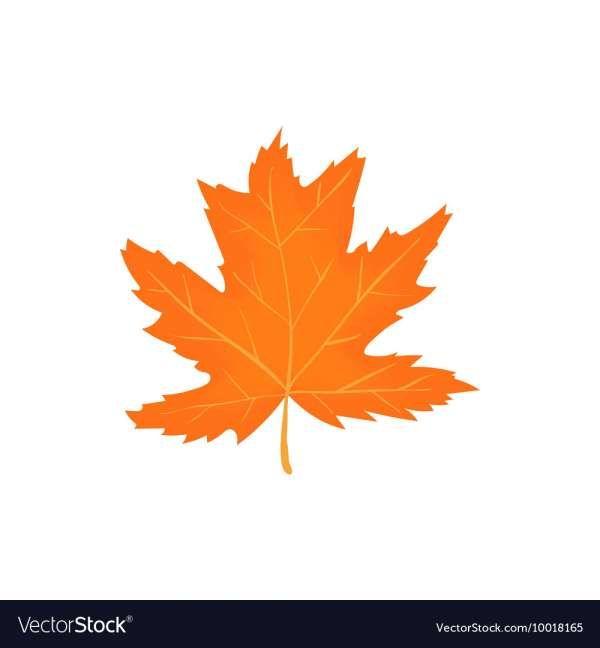 10 Autumn Leaf Icon Autumn Leaves Vector Art Illustration Nature Vector
