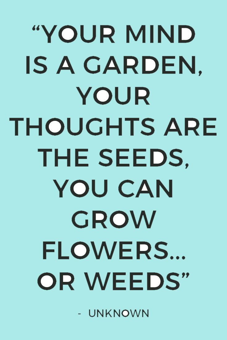 Your mind is a garden. What are you growing right now? It's time to be refreshed mentally by spring cleaning your mind. Get your free checklist with 12 easy ways.