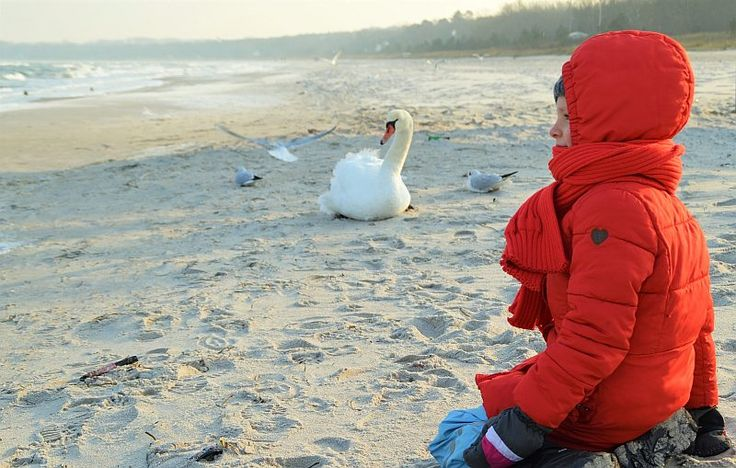 Ostsee im Winter - ein Traum!