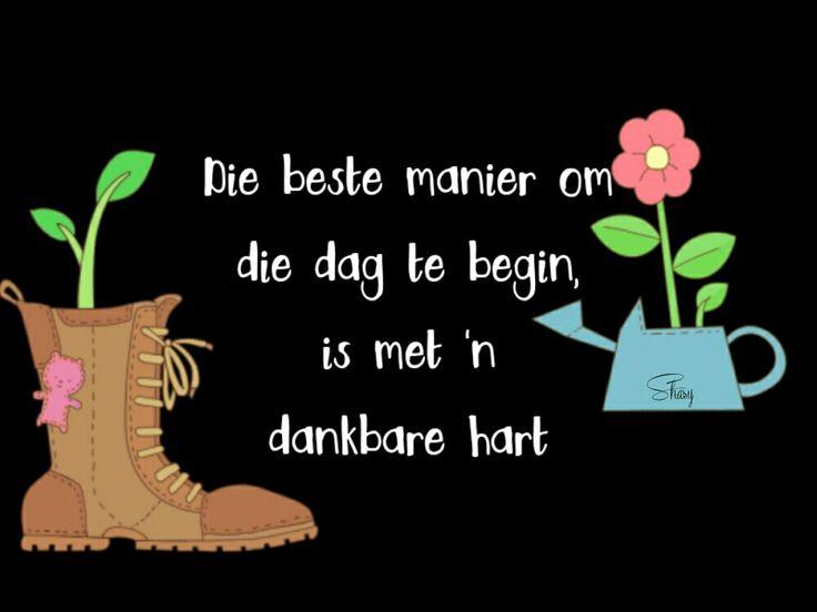 Begin jou dag met 'n dankbare hart