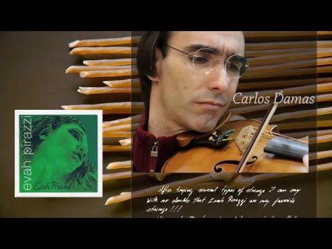 Pirastro Strings for violin Evah Pirazzi