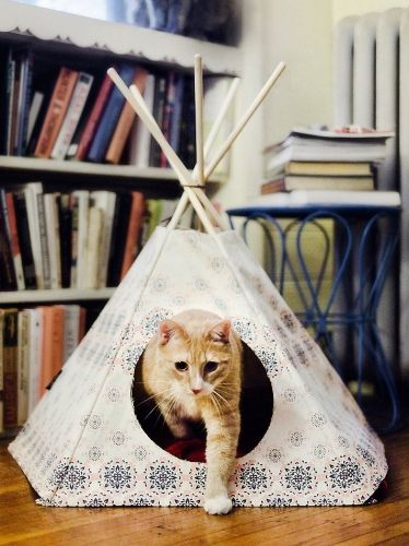 les 25 meilleures id es de la cat gorie cabane chat sur pinterest lit cabane but cabane. Black Bedroom Furniture Sets. Home Design Ideas