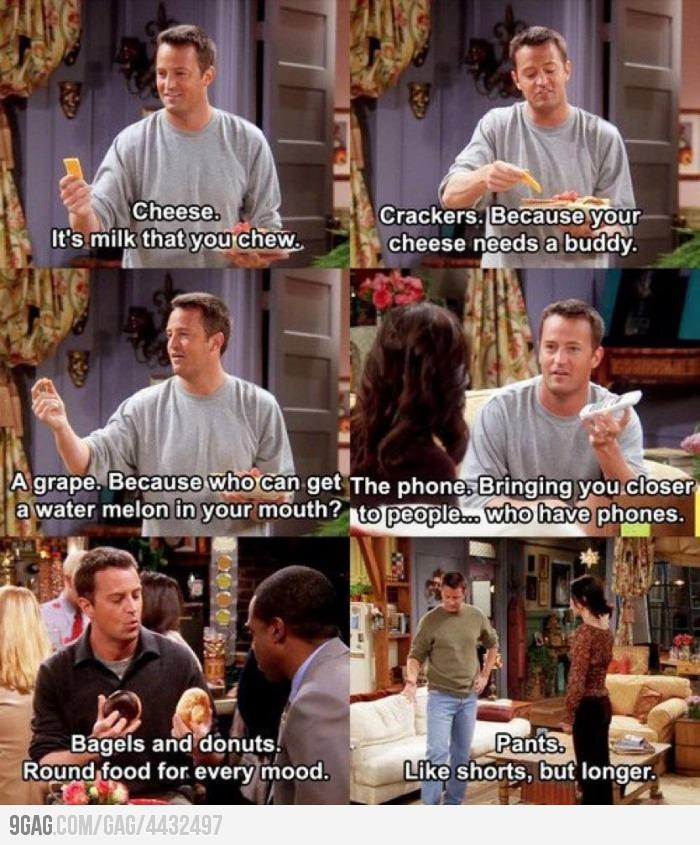 Chandler Bing-the human dictionary