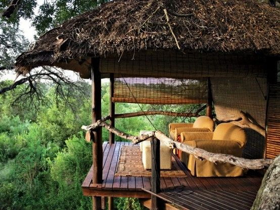 South African Tree House Hotel Room... Living with the animals... Wanna go on a safari