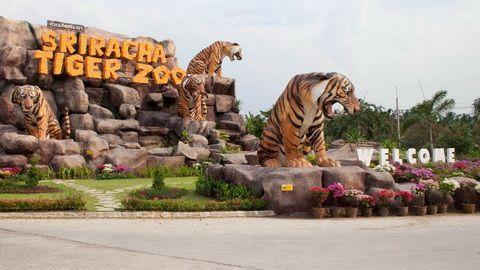 BANGKOK CHIANGMAI 6D5N (Sriracha Tiger Zoo)