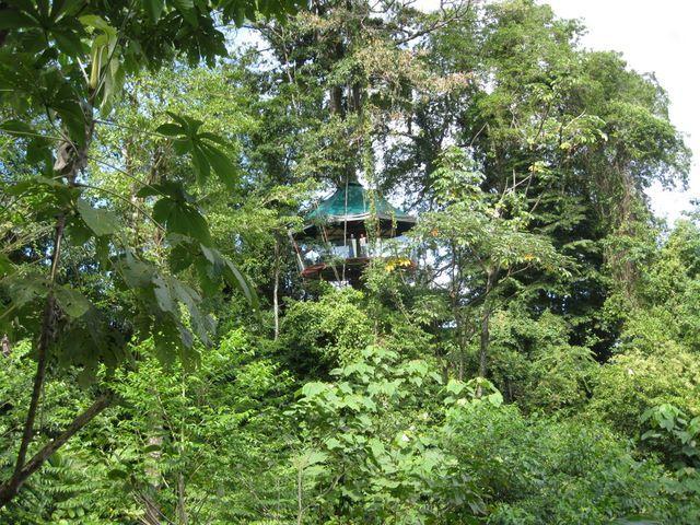 Nature Observatorio Лимон (Коста-Рика)
