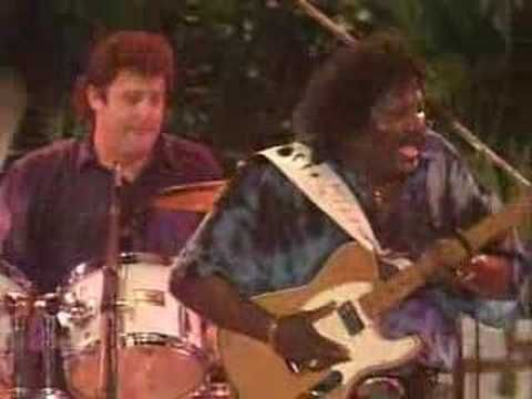 Best 25 Albert Collins Ideas On Pinterest Blues Music