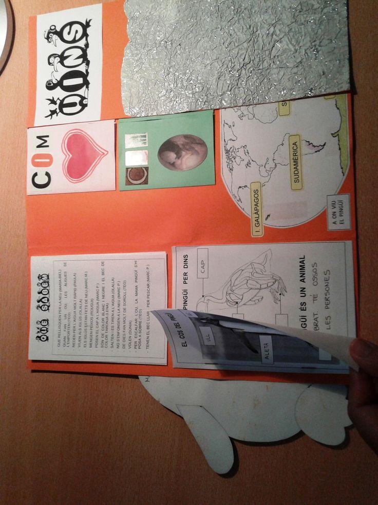 Projecte Pingüins. Presentació LAPBOOK 4