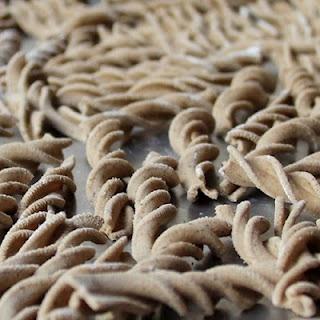 21 best images about morels on pinterest festivals for Morel mushroom recipes food network