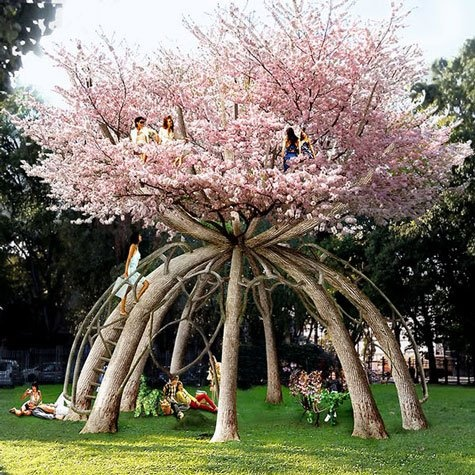 "Planted, living cherry tree.  This is what was said about it. Talk about thinking long-range! Swedish architects at VisionDivision worked with Italy's Politecnico di Milano, planting 10 Japanese cherry trees to grow into this retreat!     Time frame? 80 years!     The team tied thin rope around the plants, bending them towards a temporary structure in the middle, then plans to use pruning, grafting, and other techniques to grow this ""hourglass"" retreat!"