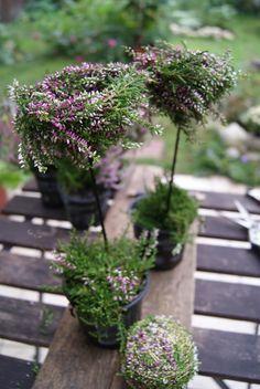Filz und Garten: DIY - Deko aus Besenheide