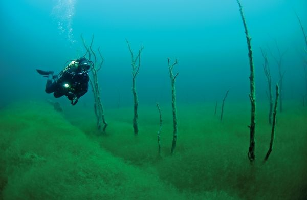 The 25 Best Freshwater Dive Sites | Lakes and Dive resort