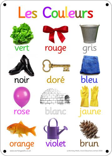 French Outdoor Learning Board - Colours (Photos)