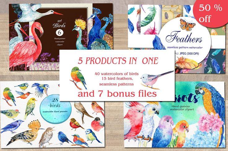 birds bundle / watercolor/ 50% sale by MitrushovaArt on @creativemarket