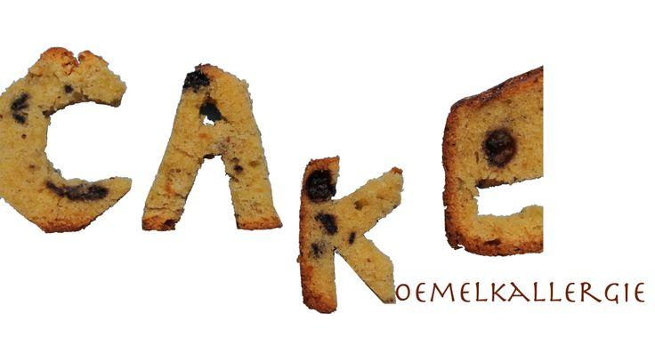 Koemelk-allergie en cake | Turned into Food http://elinehendrikse.wordpress.com/