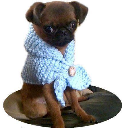 Small Baby Blue Miniature Keyhole Scarf, dog scarf, dog scarves, dog clothes, neck warmer, dog snood, dog bandana, Pet scarves UK - pinned by pin4etsy.com