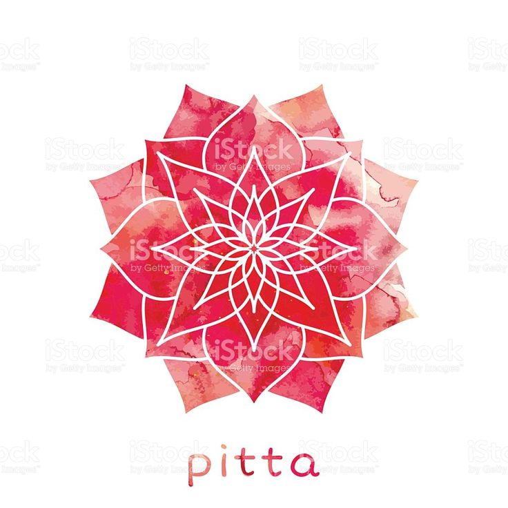 Pitta dosha Ayurvedic body type royalty-free stock vector art