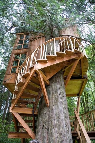 build a treehouse with a spiral staircase things-to-make