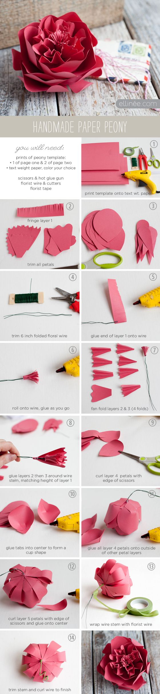 DIY Paper Peony tutorial & template -- from Ellinée journal