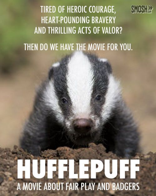 20 Harry Potter Movie Sequels | SMOSH.  Hufflepuff, a Movie about Fair Play and Badgers