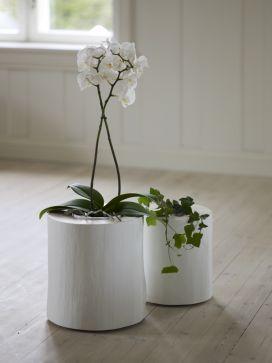 white wooden stump planters