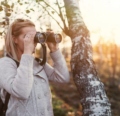 A Pain-Free Guide to Searching for Stock Photos   Social Media Today
