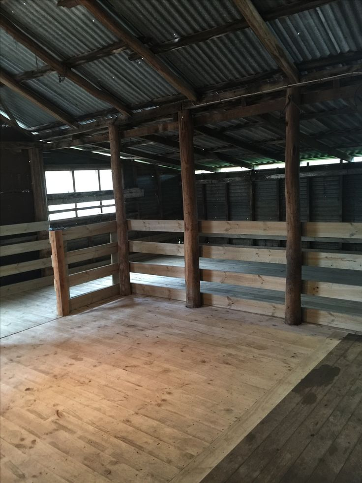The renovation of the shearing shed is complete at the Elphinstone farm #ashbournealpacas #finefleecedhuacayas