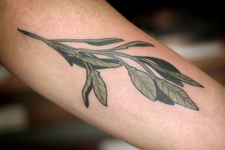 herb [sage?] tattoo . Alice Carrier