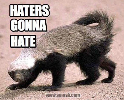 Honey badger dont give a shit - photo#50