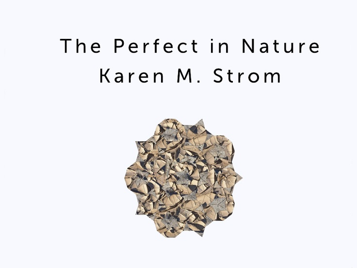 The 12 best my images images on pinterest karen oneil mexican the perfect in nature is a portfolio of 22 images these images concern the interplay fandeluxe Image collections