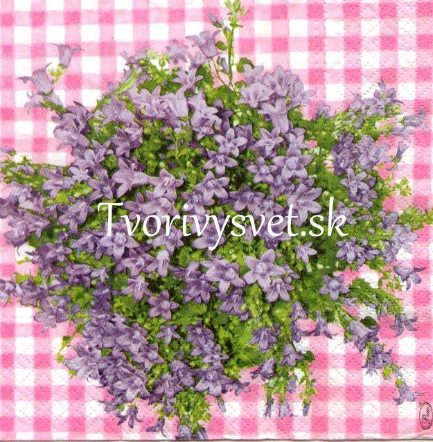 Fialové kvety na káre