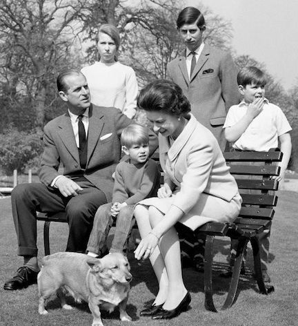 The Queen And Her Corgis - Princess Anne, Prince Charles, Prince Andrew, Duke of Edinburgh, Prince Edward and Queen Elizabeth II.