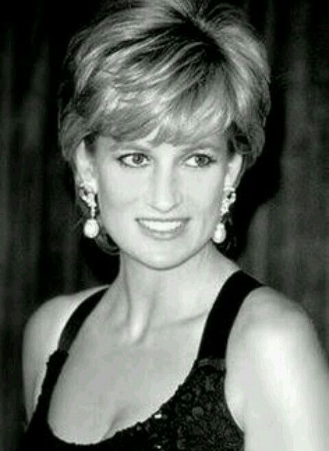 Pin By Alex Zulkarnain Noerdars On Our Princess Diana Spencer In