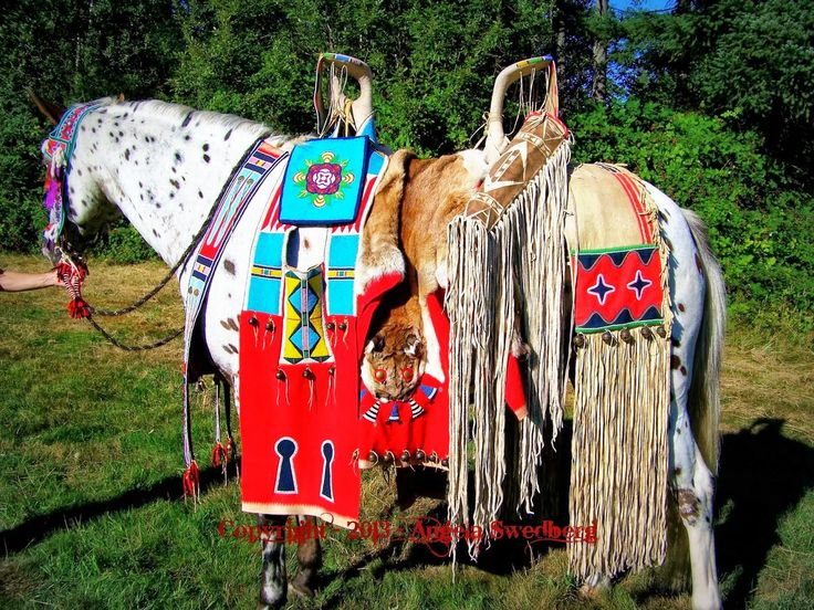 White Wolf : Amazing Native American Nez Perce Horse Regalia by Quillwork Artist (10 Pictures)