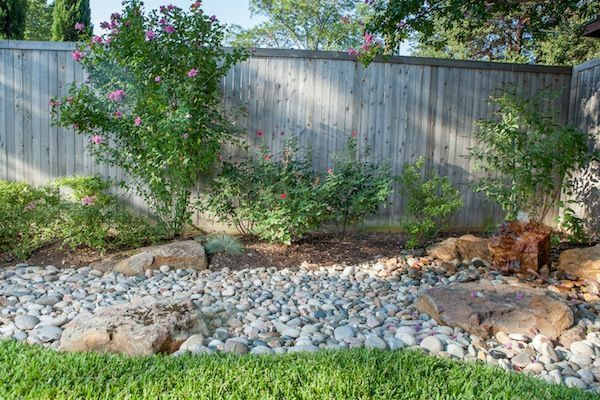 17 best images about texas gardening on pinterest for Landscaping rocks dallas