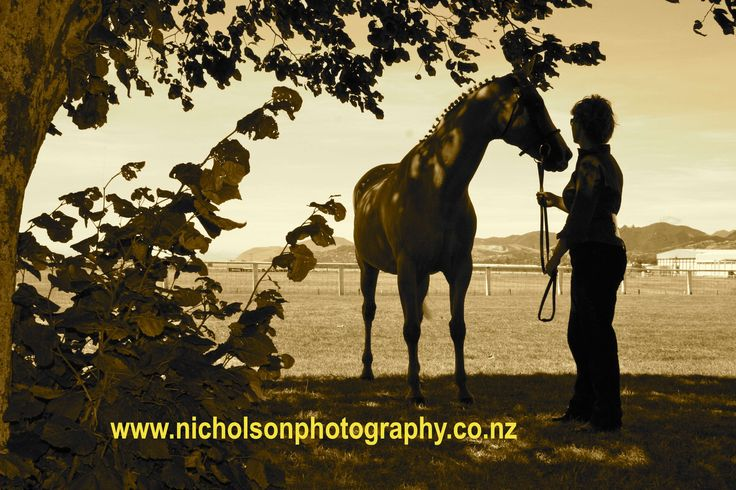 www.nicholsonphotography.co.nz