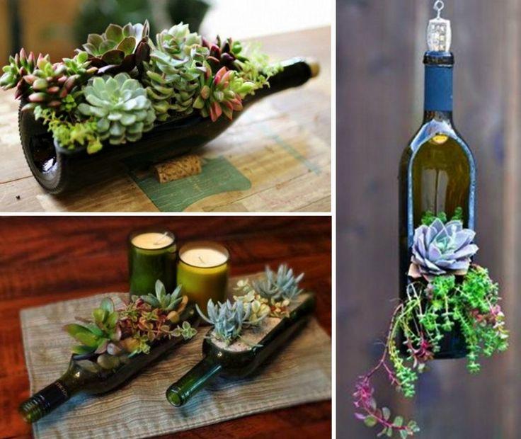 Succulent Wine Bottles