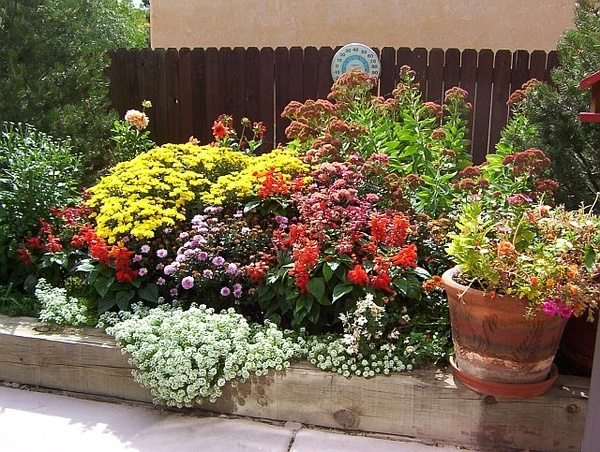 Pretty flower bed oh-the-things-i-will-grow