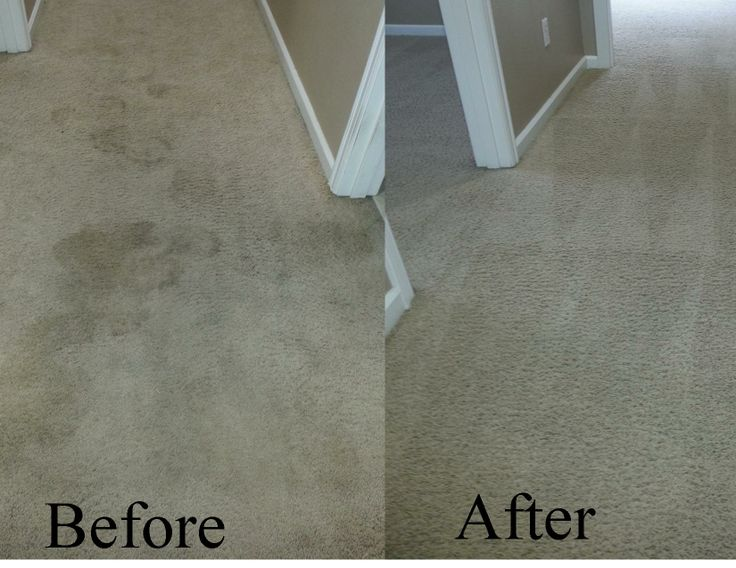 Before and after carpet cleaning job http