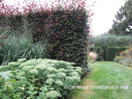 Når du begynder at interessere dig for hvilke farver du har i din have kan tænke på hvordan hvide og sorte planter virker i et havedesign