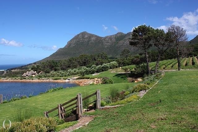 Cape Point Vineyards - Noordhoek, South Africa