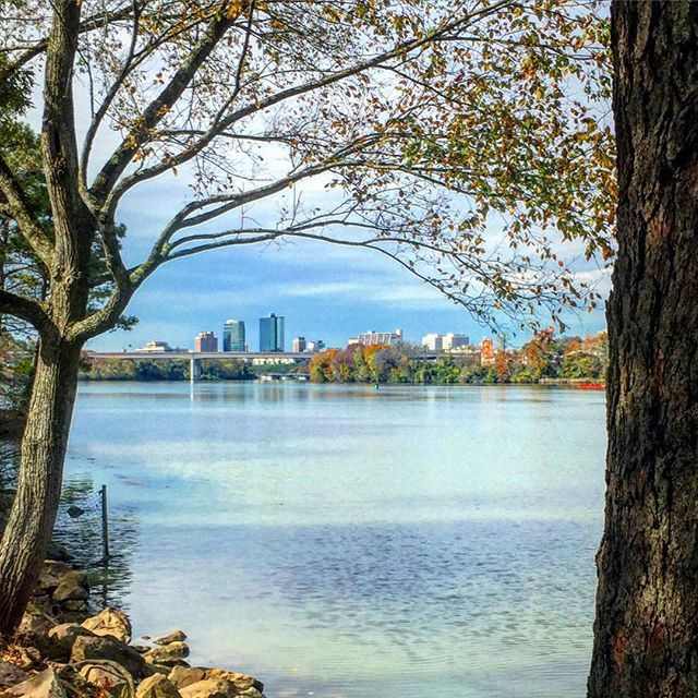 Downtown Knoxville from Island Home #Park