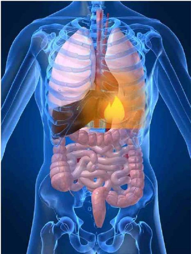 Reflü İçin Özel İçecek Reflü hastaları bu içeceği düzenli kullanırlarsa, iyileşmeye yardımcı oluyor Reflü mide içeriğinin yemek borusuna geri kaçması nedeni ile oluşur. Reflü; asit, safra ve pankreas sıvısı içeren mide içeriğinin yemek borusunun kendini bu mide içeriğinden koruma özelliğinin yok olmasından kaynaklanır.