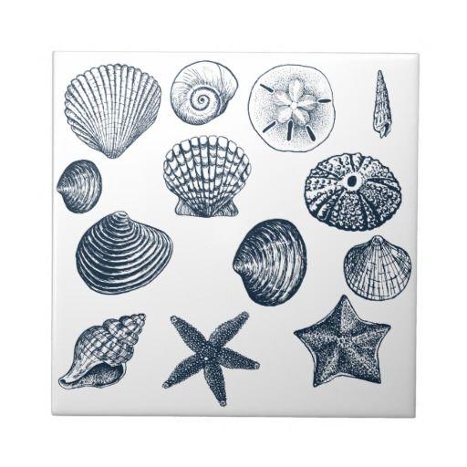 Nautical shells tile