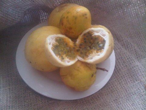 Parchitas, Maracuyás o Passion Fruits