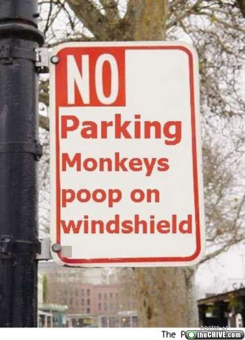 This no parking sign is cool!