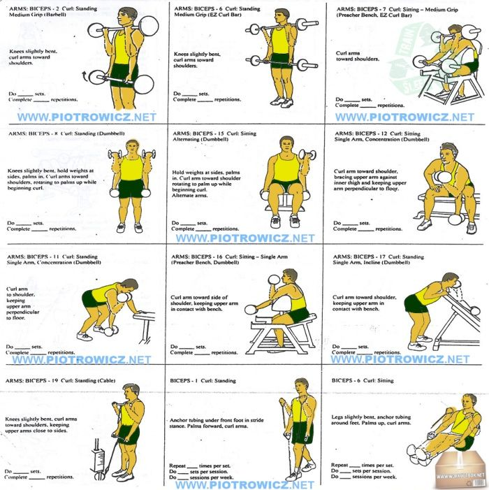 best biceps exercises workout plan for a big strong
