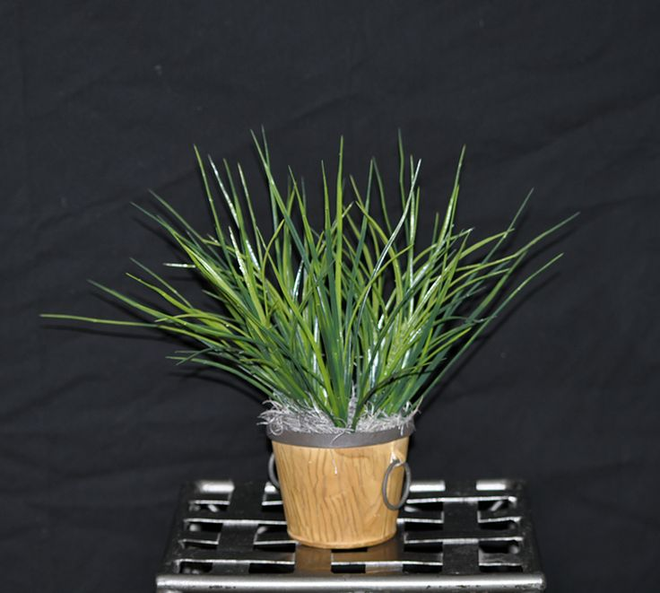 Grass Artificial Silk (PVC) Plastic Coated Vinyl Grasses in Metal Decorative Containers.  Great for ledges, bookshelves, fireplace mantels or couch table.