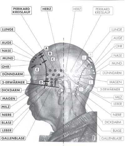 Acupunctuur - privépraktijk Alfredo Dumitrescu - holistische geneeskunde